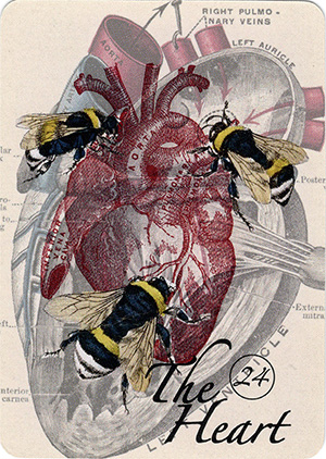 The Hearts